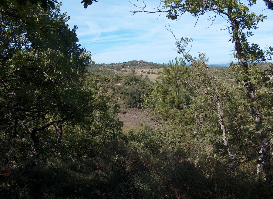 La vue finale sur les collines environnants Forcalquier