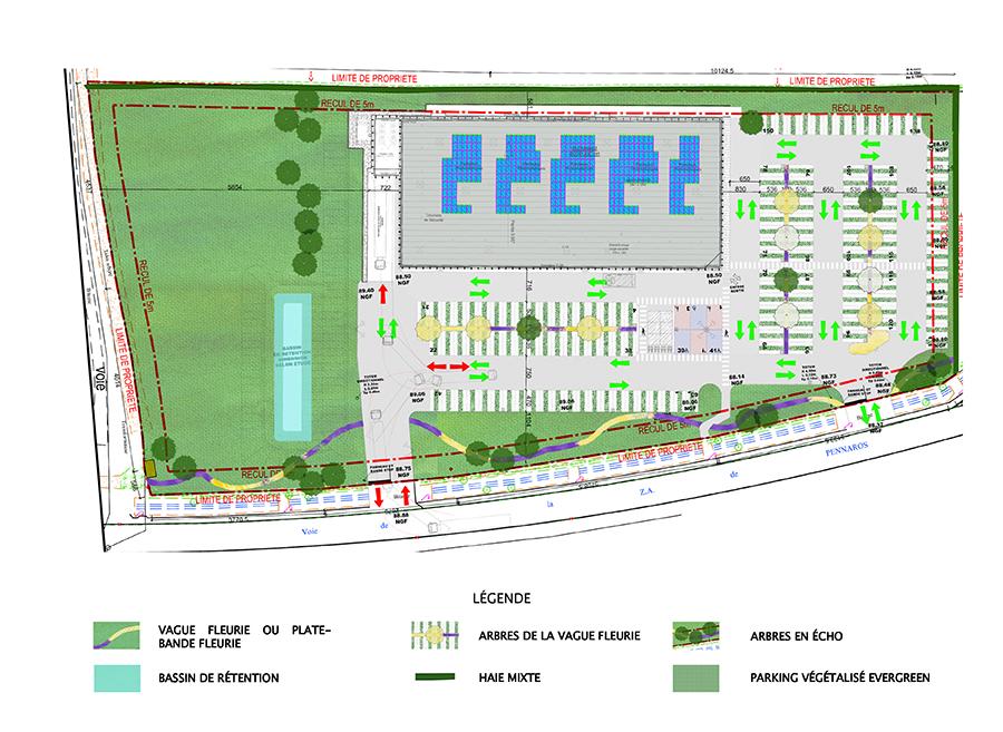 Plan masse de l'aménagement
