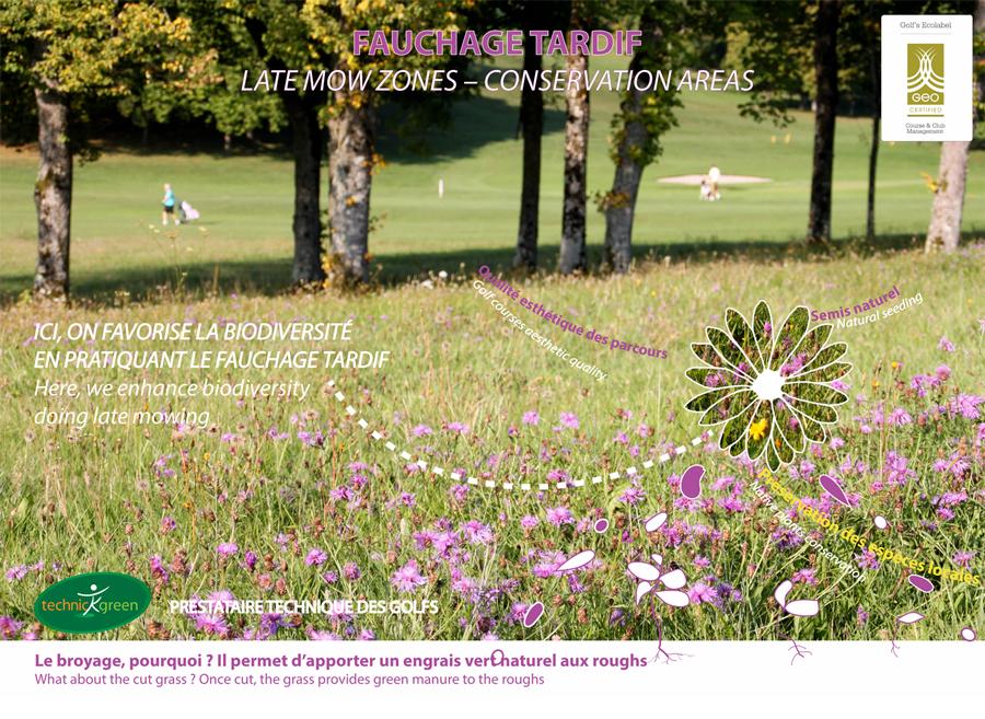 Montée en fleurs puis en graînes des Roughs pour regénérer la biodiversité autour du parcours du Mont St Jean