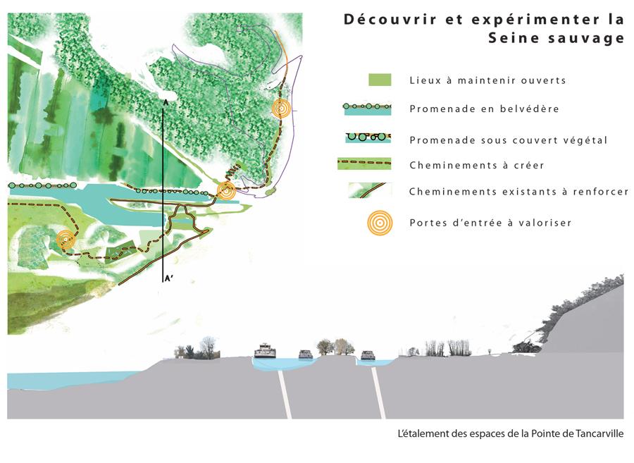 Mise en valeur d'une porte d'entrée dans le Port du Havre, la Pointe de Tancarville, la stratégie d'aménagement